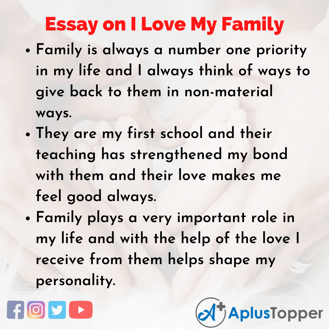 Essay about I Love My Family