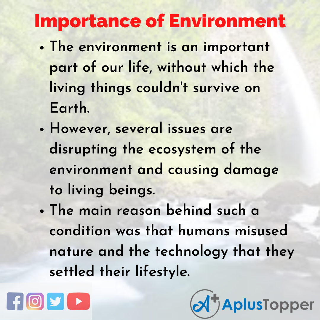 Essay about Importance of Environment