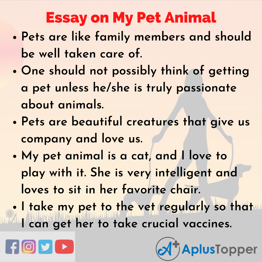Essay about My Pet Animal