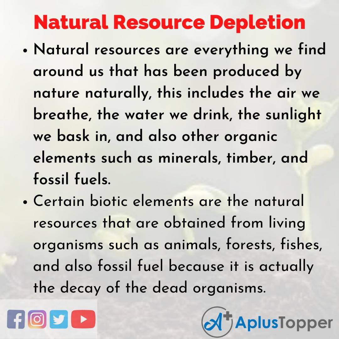 Essay about Natural Resource Depletion