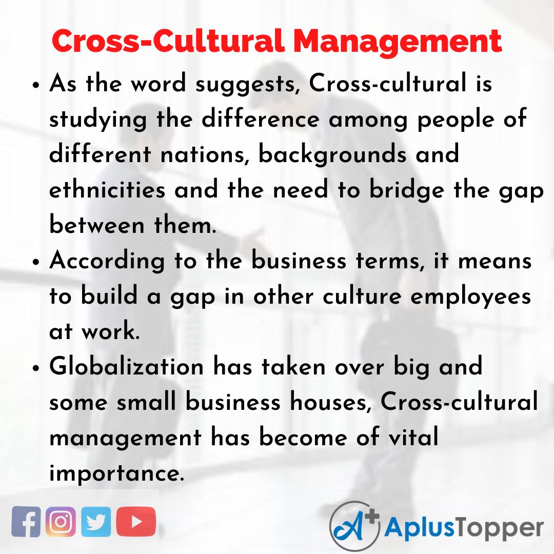 Essay on Cross-Cultural Management