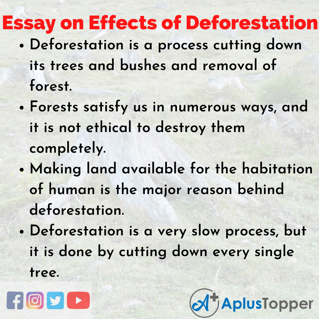 Essay on Effects of Deforestation