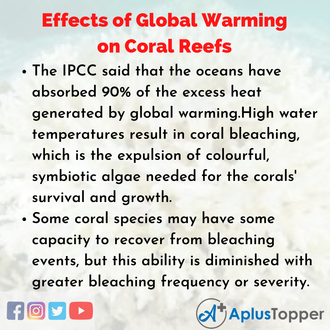 Essay on Effects of Global Warming on Coral Reefs