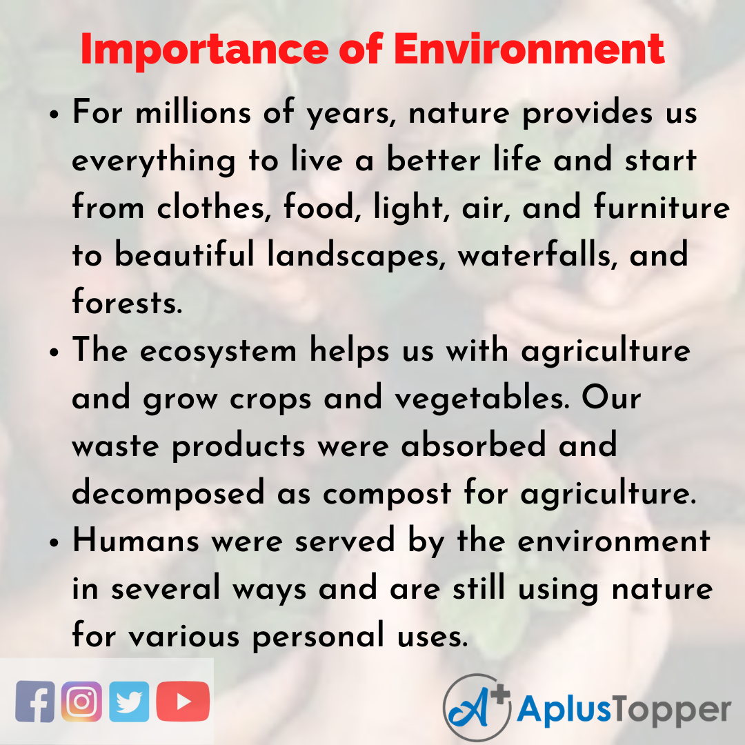 Essay on Importance of Environment