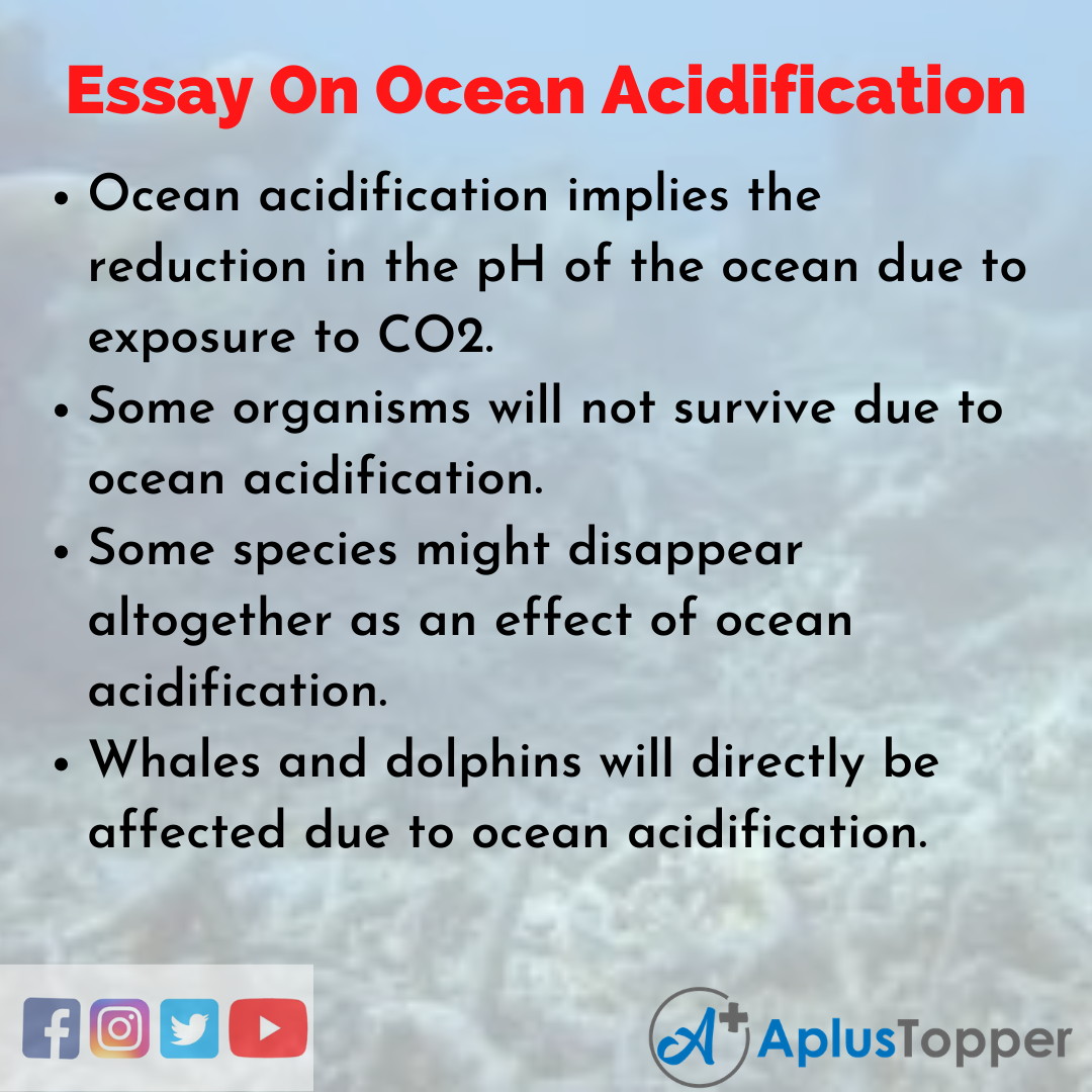 Ocean Acidification Essay