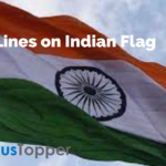10 Lines on Indian Flag