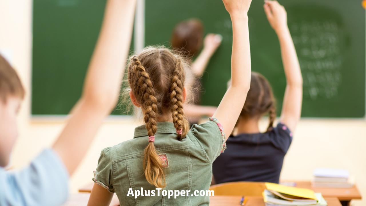 Essay on Importance Of School