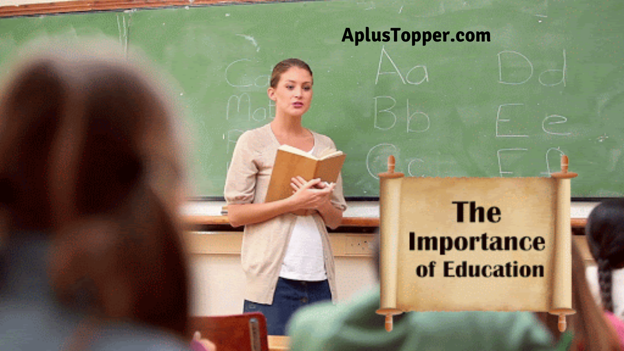 Importance Of School Essay