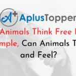 Can Animals Think Essay