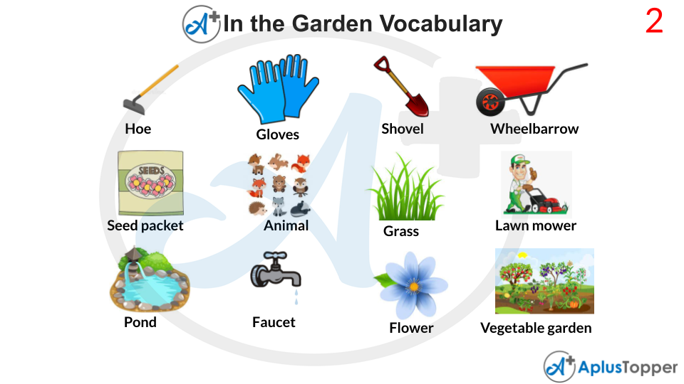 In The Garden Vocabulary With Images
