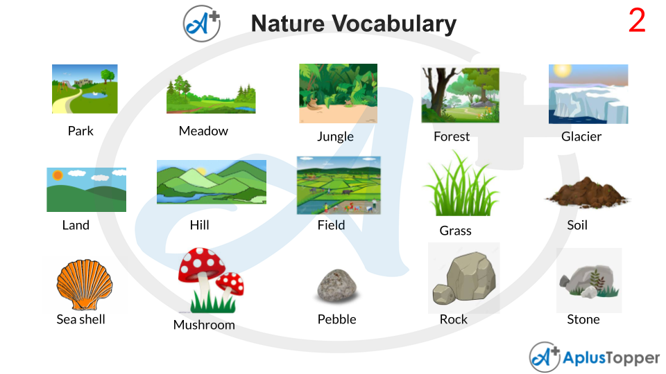 Nature Vocabulary With Images
