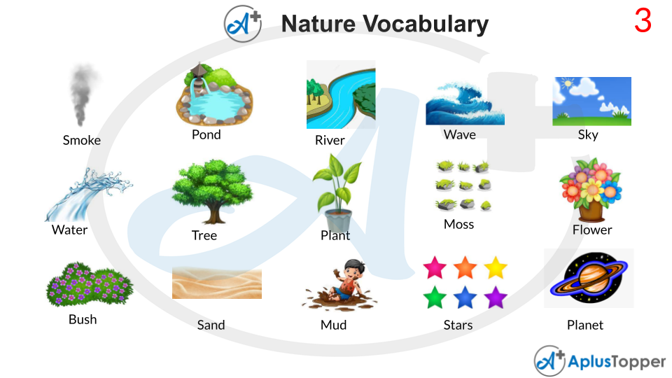 Nature Vocabulary With Pictures